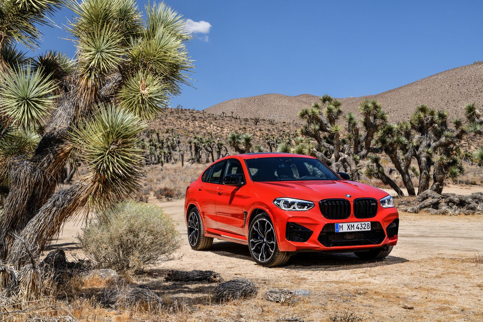 BMW X4 M Competition (34).jpg