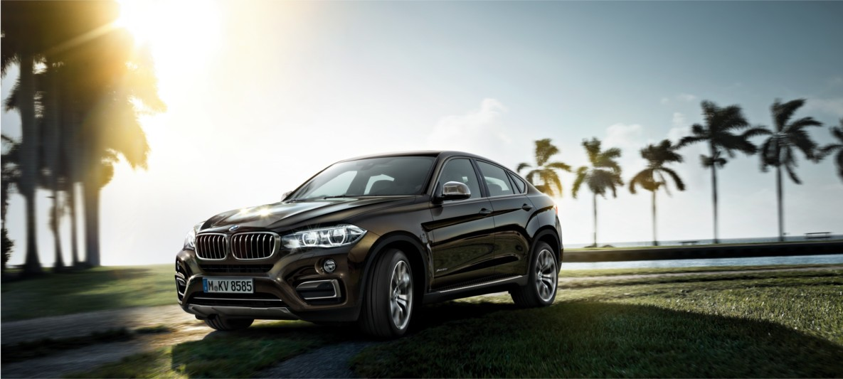 BMW-X6-cartec-group-l.jpg